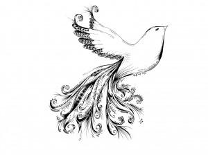 Artwork by Kaumal Baig.